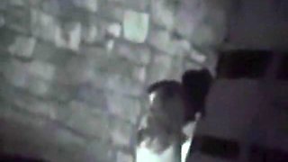 Voyeur tapes a party couple having a one night stand at the beach