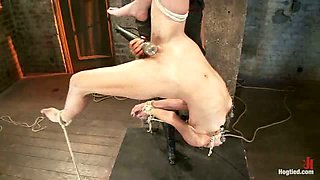 Tiny flexible brunette suffers a Category 5 suspension while being made to cum over and over!