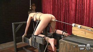 Fucking Machine Drills Her Pussy - Jasmine Delatori