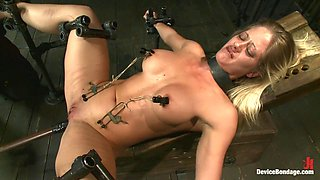 Blonde Hard Bodied Bombshell Countdown to Relaunch-17 of 20