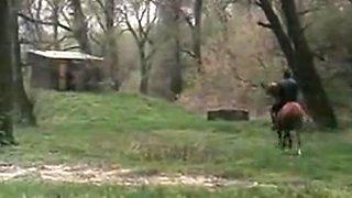 Orgasmes Sur Le Danube (1993)