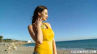 Wonderful blowjob scene on the beach with Aletta Ocean